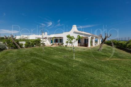 country houses - Ostuni ( Brindisi ) - Villetta Piramo