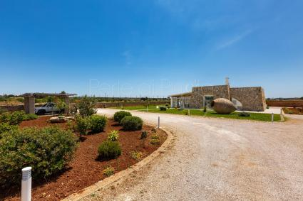 The luxury holiday home for rent in the Leuca area is completely fenced. Pets are allowed.