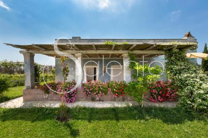 holiday homes - Melissano ( Gallipoli ) - Le Cernicole