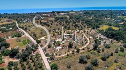 Trulli und Pajare - Tricase ( Otranto ) - Salento Stone Suite